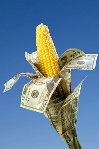 Farm Bill Corn Money