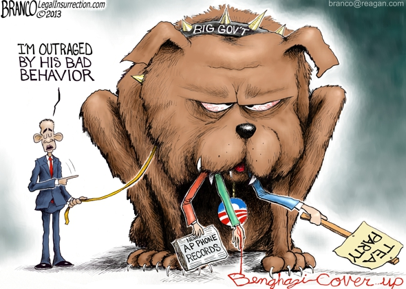 IRS Scandal Dog